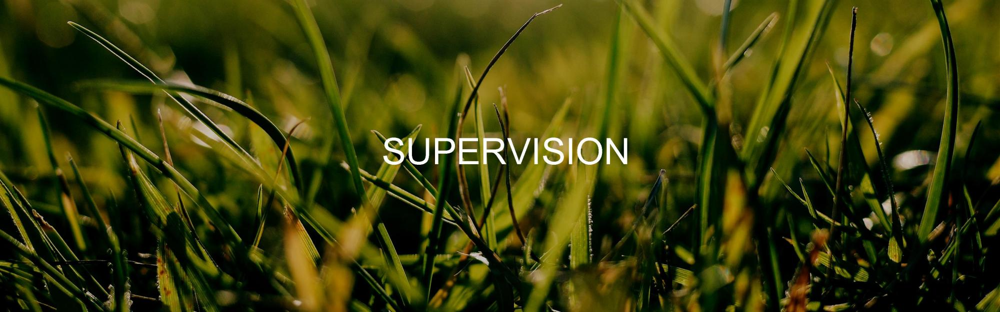 supervision grass